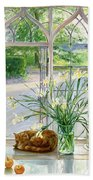Irises And Sleeping Cat Beach Towel by Timothy Easton