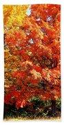 Is Autumn Already Beach Towel