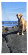 Island Dog Beach Towel