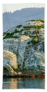 Island In A Lake, Glacier Bay National Beach Towel