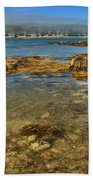 Isle Au Haut Beach Beach Towel by Adam Jewell