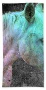 It's 1970 And I Want A Groovy Rainbow Pony Beach Towel