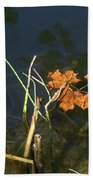 It's Over - Leafs On Pond Beach Towel