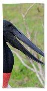 Jabiru Stork Beach Towel