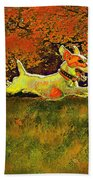 Jack Russell In Autumn Beach Towel by Jane Schnetlage