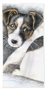 Jack Russell Puppy Beach Towel