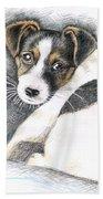 Jack Russell Puppy Beach Towel