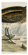 Jack Snipe Beach Towel