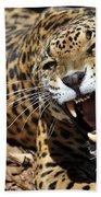 Jaguar Intensity Beach Towel