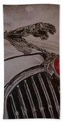 Jaguar Mk II Bonnet Beach Sheet