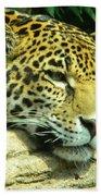 Jaguar Portrait Beach Towel