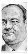 James Gandolfini In 2007 Beach Towel