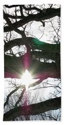 Jammer Lateralus Branching Trees Beach Towel