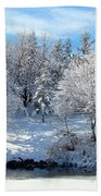 January Trees Beach Towel