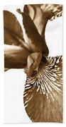 Japanese Iris Flower Sepia Brown 2 Beach Towel