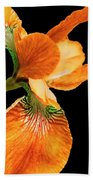 Japanese Iris Orange Black Beach Towel