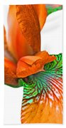 Japanese Iris Orange White Five Beach Towel