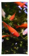 Japanese Koi Fish Beach Towel