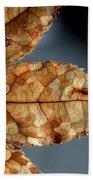 Japanese Maple Leaf Brown - 1 Beach Sheet