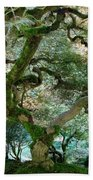 Japanese Maple Tree II Beach Towel
