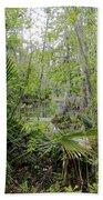 Jean Lafitte National Preserve Swamp Louisiana Beach Towel