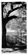 Jfk-the Stockade Fence-dealy Plaza Beach Towel