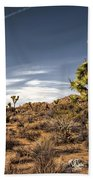 Joshua Tree 15 Beach Towel