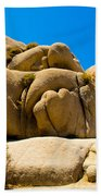 Joshua Tree 29 Beach Towel