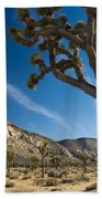 Joshua Tree Afternoon Beach Towel