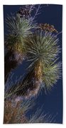 Joshua Tree By Moonlight Beach Towel