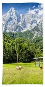 Julian Alps Farm Beach Towel