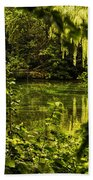 July Tranquil Indian Lake Beach Towel