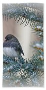 Junco In Pine Beach Towel