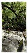 Jungle Flow Beach Towel