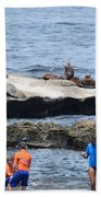 Junior Lifeguards And Sea Lions Beach Towel