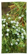 Juniper Berries Beach Towel