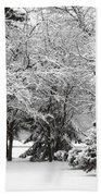 Just After A Snowfall Beach Towel by Mary Machare