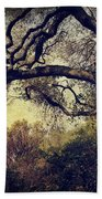 Just How It Ought To Be Beach Towel by Laurie Search