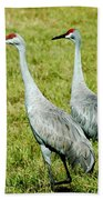 Just The Two Of Us Beach Towel