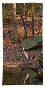 Juvenile Great Blue Heron  Beach Towel