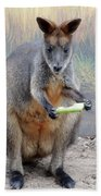 kangaroo Snack Beach Towel