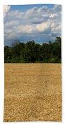 Kansas Wheat Field 5a Beach Towel