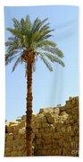 Karnak Temple 12 Beach Towel