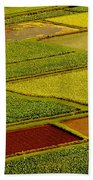 Kauai Taro Fields Beach Towel