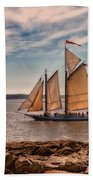 Keeping Vessels Safe Beach Towel by Karol Livote