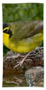 Kentucky Warbler Beach Towel