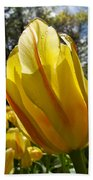 Keukenhof Yellow Tulips Beach Towel