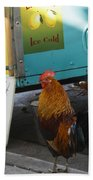Key West - Rooster Making A Living Beach Towel