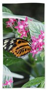 Key West Butterfly Conservatory - Monarch Danaus Plexippus 2 Beach Towel