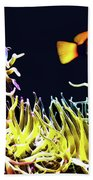 Key West Fish Beach Towel